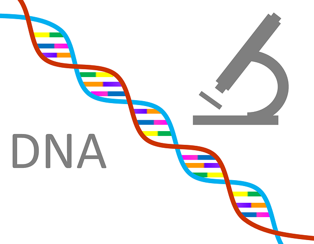 mikroskop a dna.png